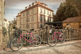 Prague, Czech Republic, old city, pink, bicycles, bridge