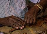 Cigar Rolling 2