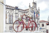 The Red Bicycle & The Castle