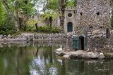 Pena Palace Gardens II