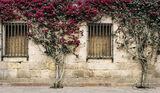 Malaga, Spain, Costa del Sol, Mediterranean, Pablo Picasso, Solomon Ibn Gabirol, Antonio Banderas,