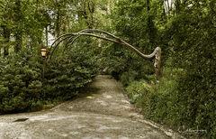 Tree Arch