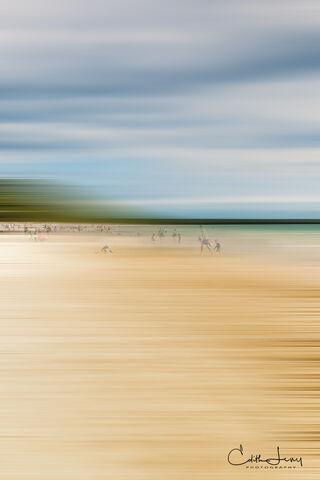 Sandbanks in Motion