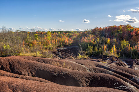 Cheltenham, badlands, Ontario Heritage Foundation, Ontario Trails Council, Bruce Trail, soft shale, Credit Valley