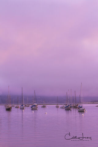 Morro Bay, Morro Rock, San Luis Obispo County, California, volcanic, sunrise, harbour, boats