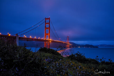 Golden Gate, bridge, San Francisco, Marin County, California, suspension bridge,