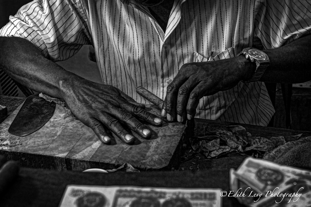 Cigar Rolling in Havana Cuba