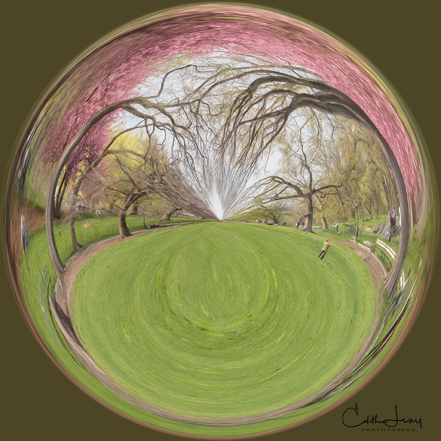 Creative digital art of Central Park.