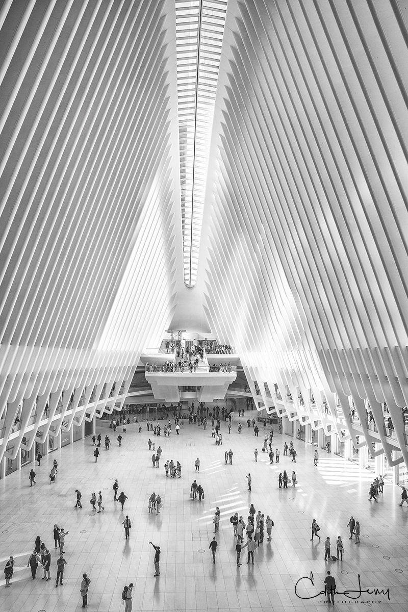 The Oculus at The Westfield World Trade Center was completed and opened in August 2016. It replaces The Mall at the World Trade...