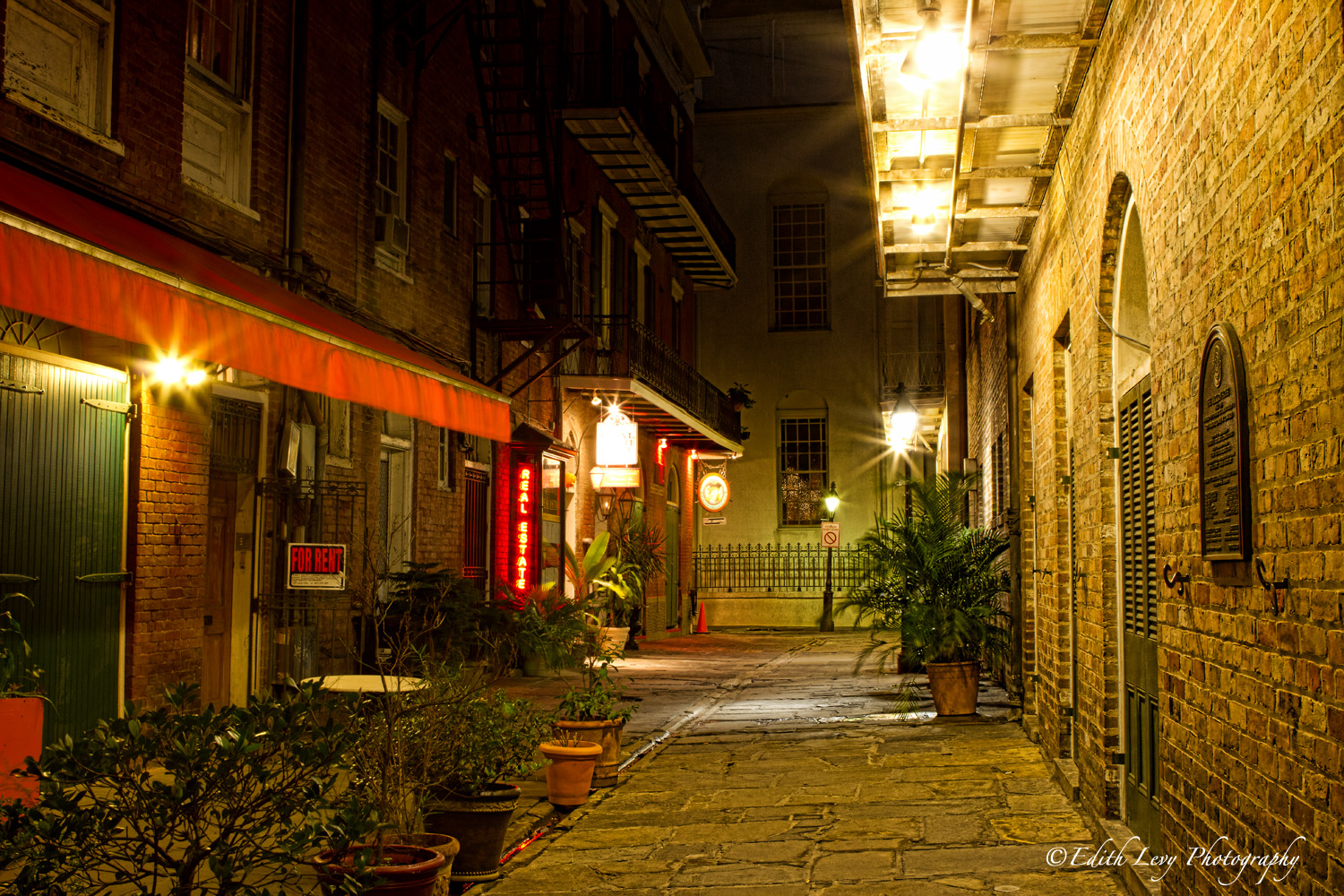 New Orleans, Louisiana, French Quarter, St. Peters street, dawn, photo