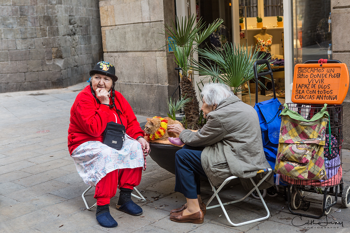 Barcelona, Spain, cat, ladies, cat lady, street photography