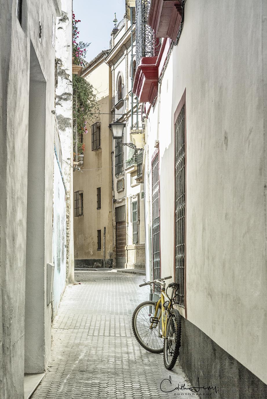 Sevilla, Spain, Andaluscia, Flamenco, Moorish architecture, palace, cathedral, bicycle, photo