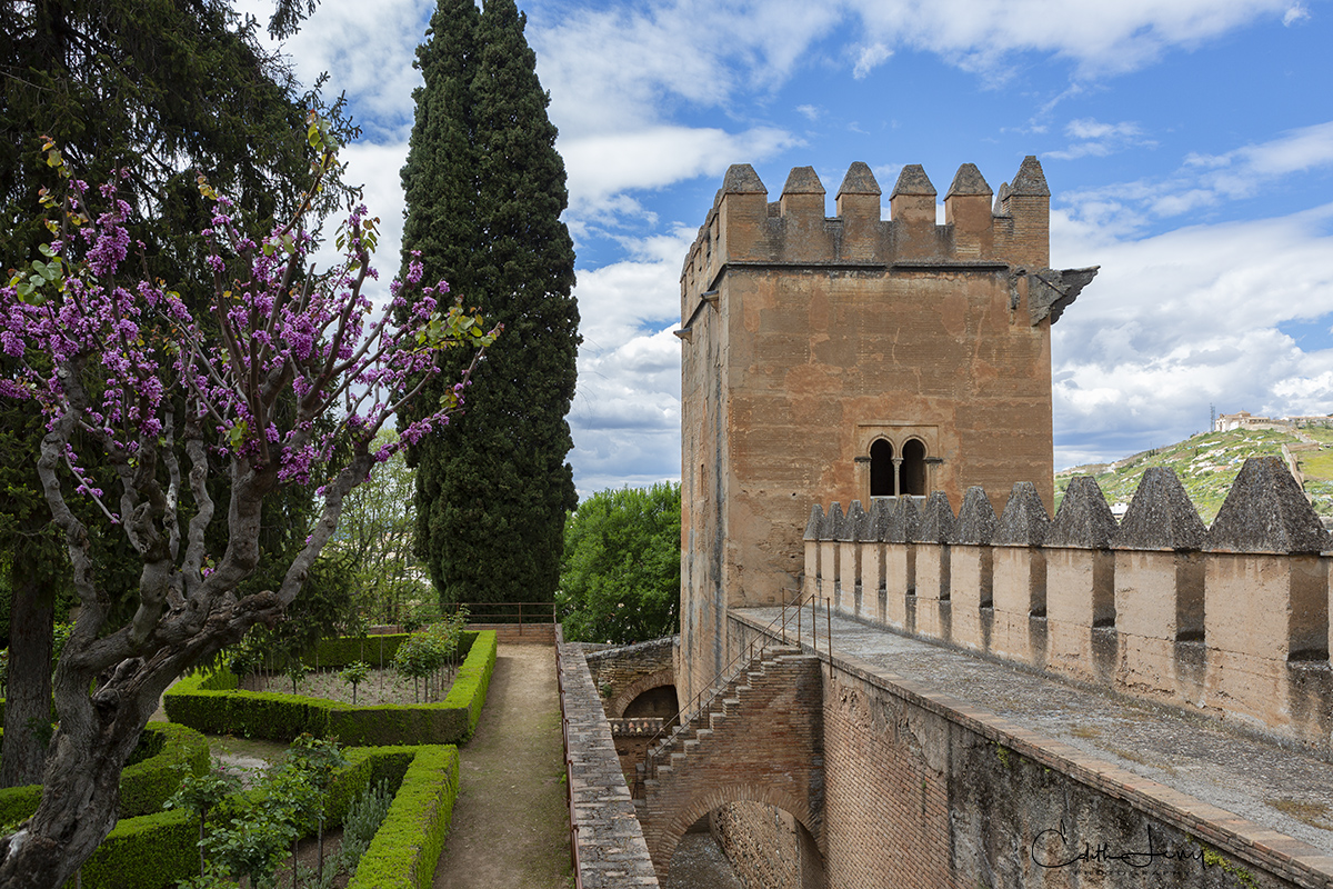 Alhambra, Granada, Spain, palace, fortress, ramparts, photo