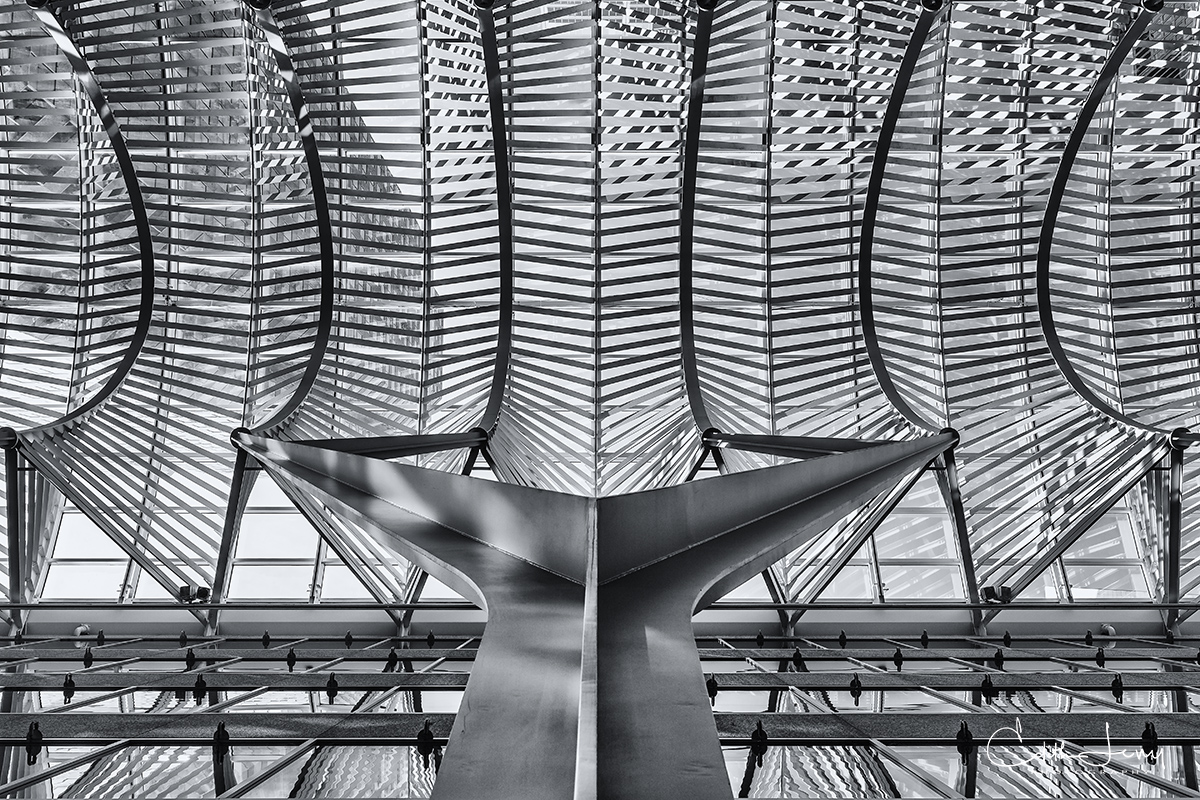 Brookfield Place, Toronto, Ontario, architectural detail, whale , photo