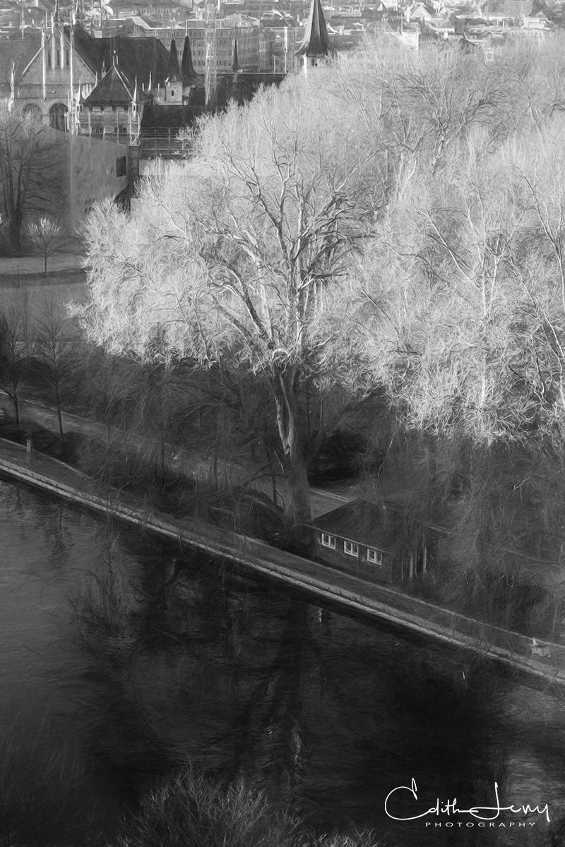 Zurich, Switzerland, black and white, trees, river