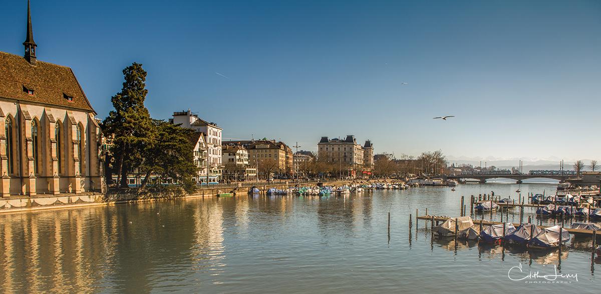 Zurich, Switzerland, Limmat river, boats, seagull on flight, buildings